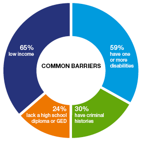 pie chat of common barriers